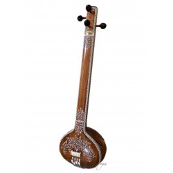 Tanpura Female Concert, full decoration