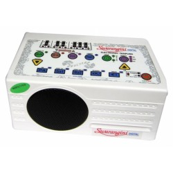 "Electronic Tanpura ""Swarangini"", SOUND LABS"