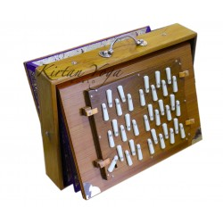 Shruti Box Monoj Kumar Sardar 3 set of reeds