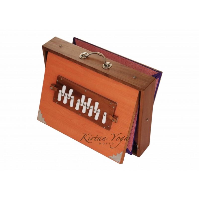 Shruti Box Raga S3