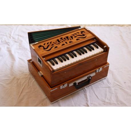 Harmonium Raga Mini Pro Traveller - 3 set of reeds